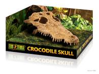 Exoterra Crocodile Skull