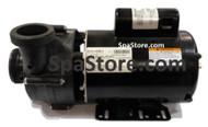 21-0112-81, Artesian® Spas, Island Spas South Seas Spas, Pump, 4HP, 2 SPEED, 56 Frame, formerly 21-0049-81