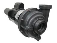 Sundance® Theramax 2 Speed Spa Pump, 2.5 HP, 230 Volt, 11.0 / 3.3 Amp, 48 frame. Front Image