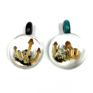"Historic Psilocybin Mushroom Glass Pendant From Denver 2019 1.5"" x 2"""