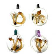 "Historic Psilocybin Mushroom Glass Pendant From Denver 2019 1.9"" x 2.2"""