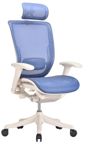 Ergo Blue Mesh Ergonomic Office Chair
