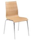 Tierra Bent Wood Chair