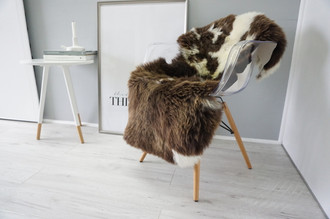 Wonderful Genuine Natural Sheepskin Rug - Soft Thick Wool - Choco | Brown | Creamy White Mix - SN 147