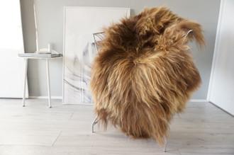 Genuine Icelandic Sheepskin Rug | Sheepskin Hide | Icelandic Sheepskin | Long Wool Rug | Natural Colour | Rare Breed SI 552