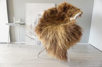 Genuine Icelandic Sheepskin Rug | Sheepskin Hide | Icelandic Sheepskin | Long Wool Rug | Natural Colour | Rare Breed SI 560