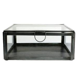 Zander Zinc and Glass Box