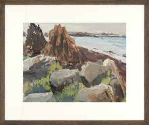 Rocky Seaside Framed Art