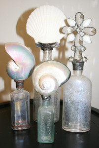 Vintage Shell Bottle Collection in White - set of four