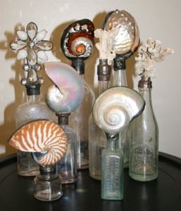 Vintage Shell Bottle Collection - set of eight