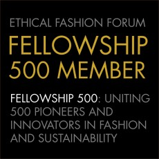fellowship-500-logo.jpg