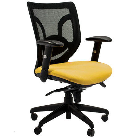 Express KB Series Mesh Back Task Chair