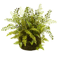 "13"" Mixed Fern w/ Twig & Moss Basket"