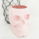 Light Pink skull holder.