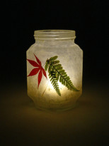 SOLD - Acer & Fern Leaf Lantern