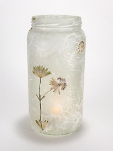 Astrantia Lantern