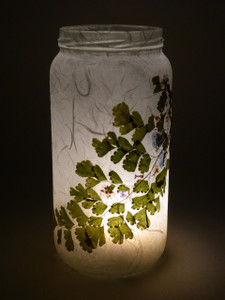 SOLD - Adiantum Fern Lantern