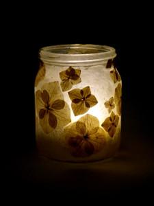 Hydrangea Lantern