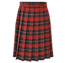 Knife Pleat Skirt Half Size
