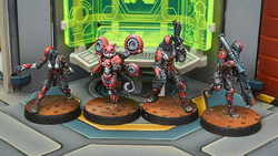 Infinity Tomcats - Special Rescue Team - Nomads