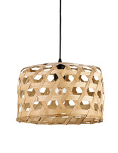 Willowbrush Pendant By Currey & Company