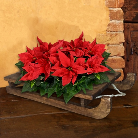 Wooden Sled Planter, Wooden Sled Decorative Accent