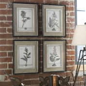 Botanical Wall Art, Tuscan Wall Art