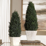 Preserved Cypress Cone Topiaries