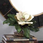 Silk Magnolia