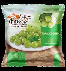 Gooseberry Quick frozen (300g pack)