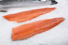 Fresh Salmon 1 LB