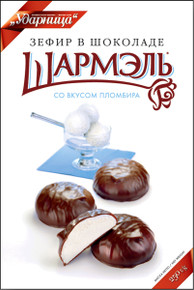 Russian Style Zefir with Ice Cream Flavor in a Chocolate