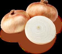Sweet Onion 1 LB