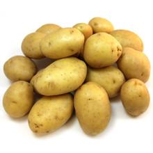 Golden Potato (pack 5 LBs)