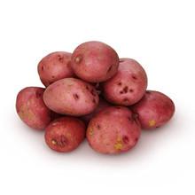 Red Potato 1 LB