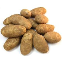 Idaho Potato (pack 10 LBs)
