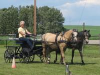 Sue Winsor and Pony Pair