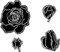 Group of Rose I