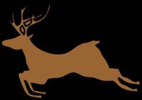 Reindeer Jumping (2 front legs)