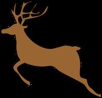 Reindeer Jumping (1 front leg)