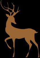 Reindeer Standing
