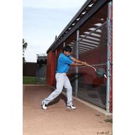 PowerMax Swing Balls