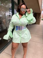 Washington Tunic Dress