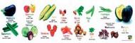 Poster: Vegetable (Multilingual)