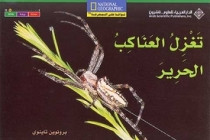 National Geographic: Level 16 - Spiders Spin Silk (Arabic-English)
