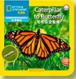 National Geographic Kids: Caterpillar to Butterfly (Chinese_simplified-English)