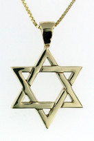 14kt Yellow Gold Jewish Star(P456)