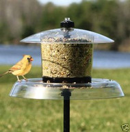 Droll Yankees Jagunda Squirrel Proof Bird Feeder w/Auger