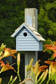 Heartwood Cape Cod Wren Bird House Whitewashed