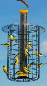 Droll Yankees Large Domed Cage Thistle Feeder Yellow